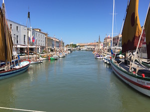 What to do, Cesenatico